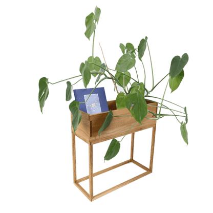 blomsterkasse med plante og bøger