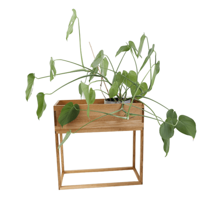 indret med plantekasse